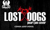 Folder do Evento: Pearl Jam (Lost Dogs) e Foo Fighters