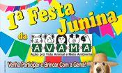 1a Festa Junina Avama